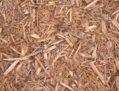 Gold Colored Mulch