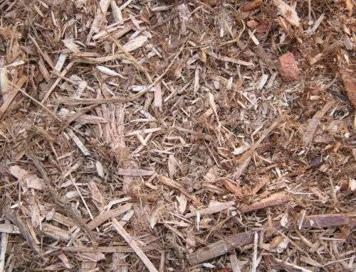 Western Red Cedar Mulch